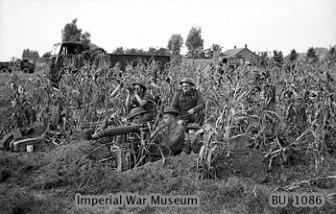 7th Bn, R.N.F. - Holland, 1944
